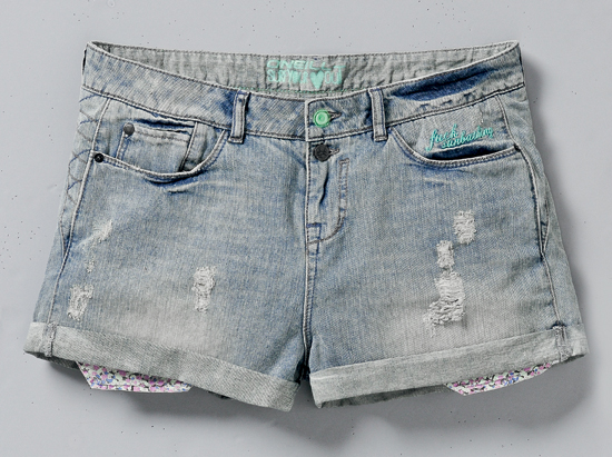 Rogue Mag Brands ONeill womens jean shorts